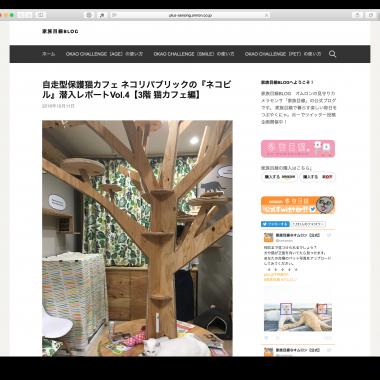家族目線BLOG にネコビル(大阪心斎橋店)が紹介されました 4