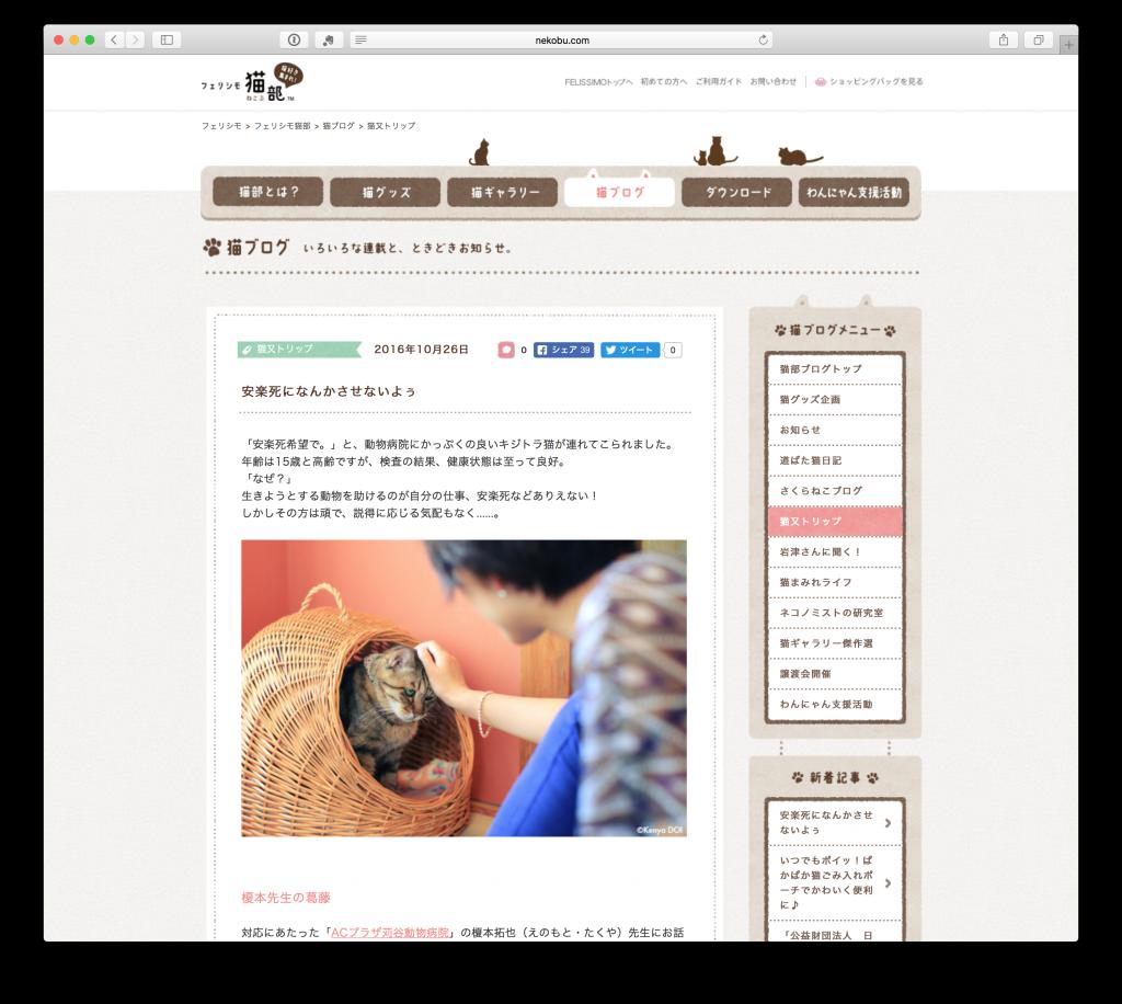 フェリシモ猫部 に お茶の水店の斗寅(ととら)が紹介されました
