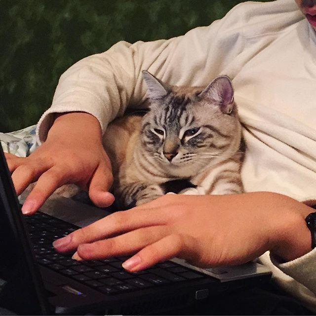 一緒にパソコン