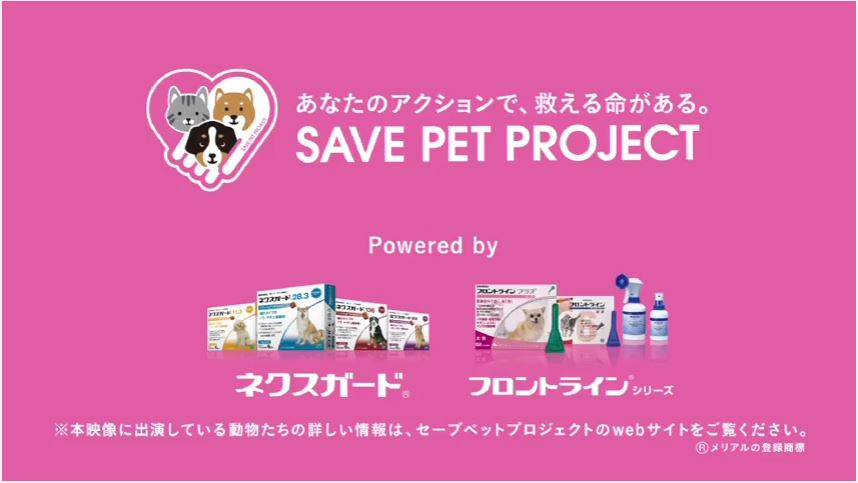 SAVE PET PROJECTの動画にキャリーと春之介が登場!