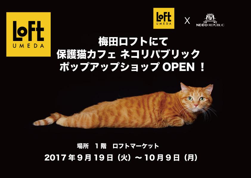 梅田ロフト1階 ネコリパブリック ポップアップショップOPEN(10/9まで)